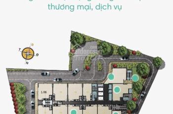 Chính chủ bán 2 căn SHOPHOUSE MẶT TIỀN DUY NHẤT tại dự án D-Vela - 1177 Huỳnh Tấn Phát, Quận 7, HCM