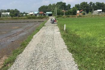 Bán 400m2 thổ cư sổ hồng riêng gần Quốc Lộ N2, huyện Đức Hòa, Long An