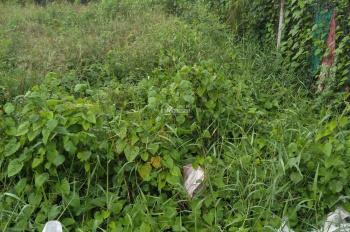 Bán đất chính chủ miễn môi giới