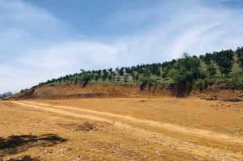 Bán gấp 2ha đất có chủ chương xây dựng chuồng trại chăn nuôi, huyện Lương Sơn