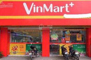 MT đường An Bình - ngay cổng KCN Bình Đường, TP. Dĩ An, đang cho Vinmart thuê. 225m2 - 9 x 25m