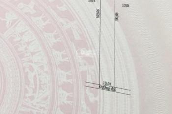 Bán 10x100m (1000m2) đất huyện Hớn Quản thị trấn Tân Khai tỉnh Bình phước sổ hồng riêng giá 500tr