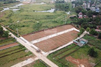 Siêu phẩm đất nền Hòa Lạc được mong chờ nhất 2020 - 32 lô Bình Yên