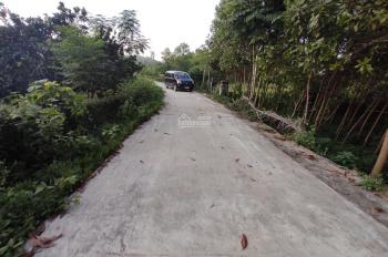 5500m2 400m2 thổ cư gần đường 446 Đông Xuân, trung tâm của CNC Hoà Lạc, giá cực rẻ