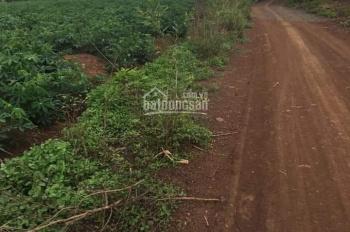 Chính chủ cần bán 10 mẫu đất xã Hưng Thịnh, Trảng Bom, LH 0936739179