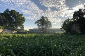 Bán gấp 1.383m2 đất thổ cư bằng phẳng vuông vắn tại Lương Sơn, Hòa Bình
