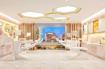 Nhà mặt phố Liễu Giai - mặt tiền lớn - dòng tiền lớn - building dát vàng - cực hiếm - LH 0968804989