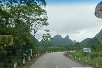 Đất đẹp tìm người tài tại Cư Yên - Lương Sơn - Hòa Bình