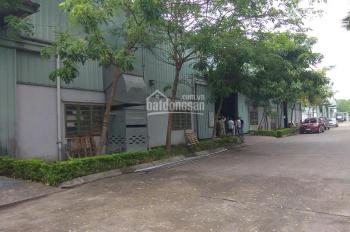 Cho thuê kho xưởng TT Như Quỳnh (Quốc lộ 5) - Văn Lâm - Hưng Yên, công ty Bình An: 1500m2, 4500m2