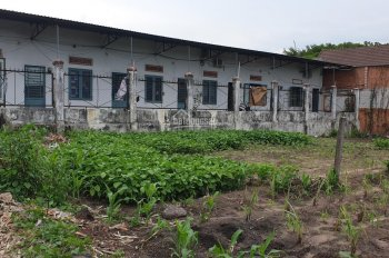 Bán đất 1 sẹc đối diện Linh Hoàng Thịnh, Bà Tô, đất ngay trung tâm thị trấn Phước Bửu CC
