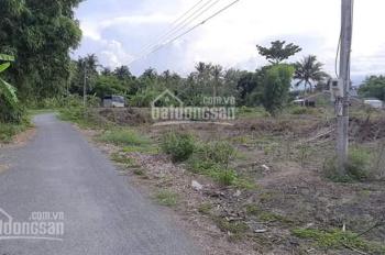 Chính chủ cần bán gấp 16 công đất ruộng cập kênh đường Lê Văn Tám (Cầu Ô Xây đi vào) - Châu Thành