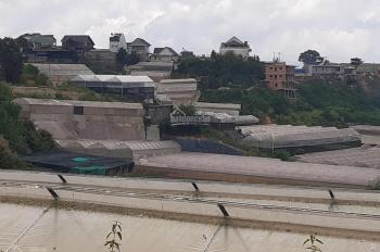 Cho thuê đất trống 2400m2 tại Phường 4, TP. Đà Lạt