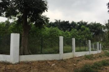 Bán đất thổ cư tại Hòa Thạch, Quốc Oai, Hà Nội, siêu vip