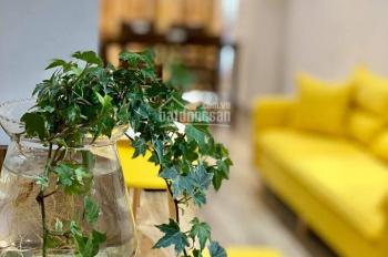 Cho thuê căn hộ cao cấp Northern Diamond Long Biên, Hà Nội