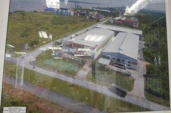 Cho thuê kho khu công nghiệp Hưng Phú 1, diện tích 1.785m2, giá 98 triệu