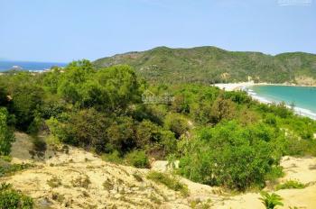 Đất nghỉ dưỡng view biển khu du lịch Bãi Nồm Phú Yên 8000m2 giá siêu rẻ cho đầu tư 1.4 tr/m2