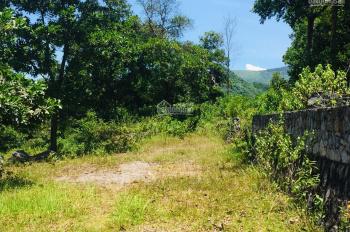 Chuyển nhượng 1316m2 đất thổ cư nhà vườn view mặt hồ tại Đồng Chanh