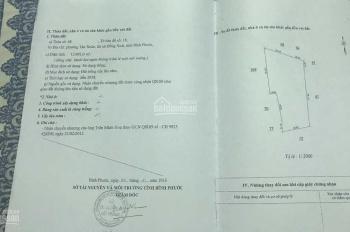 Chính chủ cần bán gấp trang trại tâm huyết tại Đồng Xoài, DT: 1.3 ha. LH: 0968607060