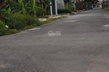 Bán đất tại Bãi Huyện Vân Tra, An Đồng