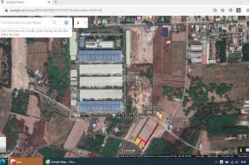 Đại hạ giá - bán lỗ lô đất 2 MT đường 81, DT 704m2, gần Coopmart Phú Mỹ, gần KCN 450Ha Hắc Dịch