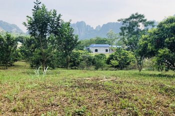 Chính chủ cần bán lô đất thổ cư diện tích 4700m2 thuộc xã Tân Vinh, huyện Lương Sơn, tỉnh Hòa Bình