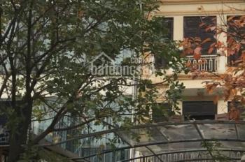 Biệt thự Tây Hồ 212m2, bán nhà An Dương Vương, Ciputra 12 tỷ