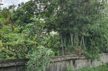 Bán 2 lô đất thổ cư ngay sau chợ Bắc Sơn, An Dương, Hải Phòng