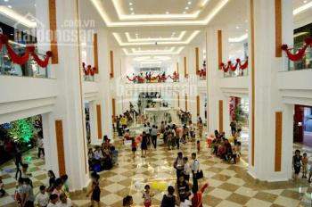 Cực hiếm, bán căn hộ thương mại Royal City, 231m2, cho thuê 150 tr/tháng, kinh doanh hái ra tiền