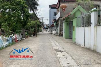 Bán gấp 100m2 đường 5m thôn Cam, Cổ Bi, Gia Lâm. LH 097.141.3456