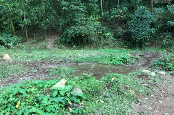Bán rẻ lô đất trang trại diện tích 2,5ha tại huyện Lương Sơn, tỉnh Hòa Bình