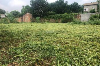 Bán gấp 1117m2 thổ cư vuông vắn, gần đường Hồ Chí Minh, Nhuận Trạch, Lương Sơn, HB