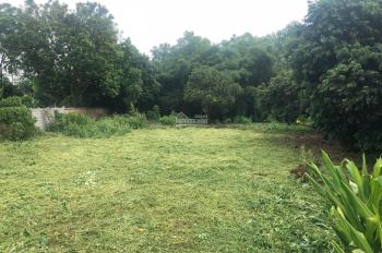 Cần bán 1117m2 thổ cư 300m2 đất vuông vắn, bằng phẳng Nhuận Trạch, Lương Sơn, Hoà Bình