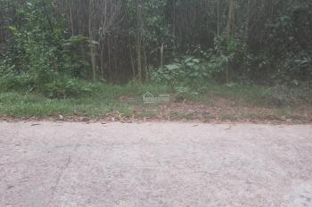 Bán 814m2 đất cây lâu năm giá 350 triệu Hòa Phú, Hòa Vang, Đà Nẵng