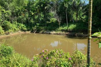 Bán đất 1.9ha có 300m2 đất ở và nhà trên đất, gần 3000 cây trầm 20 năm tại Hòa Vang, Đà Nẵng
