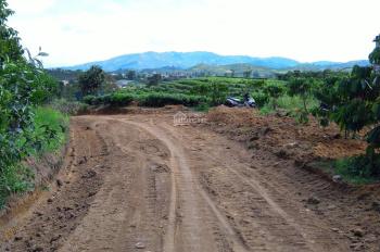 Cần bán lô đất Xã Đại Lào, Bảo Lộc, Lâm Đồng