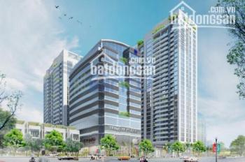 Cho thuê 80m2 - 150m2 - 250m2 - 500m2 VP Tràng An Complex, 1 Phùng Chí Kiên, Cầu Giấy