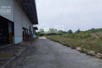 Bán đất chính chủ ngay xã cây trường, thổ cư 100%, 100m2/320 triệu, SHR