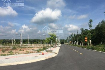 Gia đình thiếu nợ do vay tiền nóng cần bán gấp lô đất ngay trung tâm Bàu Bàng. DT 1000m2 giá 700tr