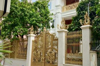 Siêu biệt thự đường Bành Văn Trân gần CX Tự Do, Q. Tân Bình, DT 14mx27m, 2 lầu. Giá chỉ 45 tỷ TL