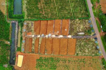 Đất Bảo Lộc Đam'ri Hill Village, Hot trend đất nghĩ dưỡng gần đà Lạt đón đầu xu hướng: 0946839969