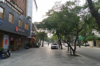 Chính chủ bán nhà phân lô ô tô vip Vạn Bảo, Ba Đình, 53m2, 2 tầng, mặt tiền 4,5m. Giá 9.7 tỷ