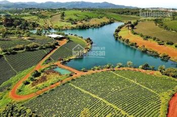 Bán đất trên Bảo Lộc gần khu du lịch nghỉ dưỡng, thác Đambri thổ cư có sổ rồi