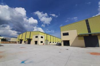 Cho thuê xưởng trong KCN Mỹ Phước.