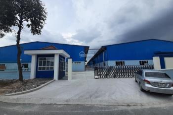 Cho thuê xưởng trong KCN Mỹ Phước
