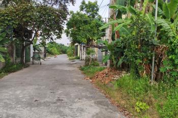 Bán đất giá rẻ khu chung cư phân lô Vân Tra, An Đồng, An Dương, Hải Phòng