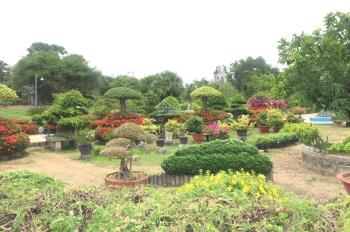 Một nền đất đẹp nhất và duy nhất trên đường số 20, Tam Phước, Long Điền