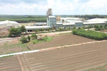 Đất nền sổ đỏ cầm tay ngay TTHC huyện Đồng Phú 6x26m, full thổ cư, giá 650tr