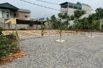 Cần bán đất dãn dân siêu đẹp tại khu Đồi Đốm, Xã Bình Yên, 90m2 full thổ cư, giá từ 16,5 triệu/m2