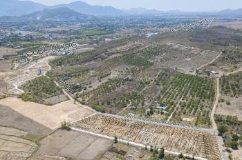 Mở bán đất nền Diên Hòa Diên Khánh, giá F1, sổ hồng từng lô, tặng giấy phép xây dựng LH 0989926560