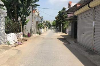 Bán lô đất cực đẹp tại Cái Tắt, An Đồng, An Dương, Hải Phòng. LH 0981460231